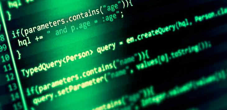 Public Security: cyber crime